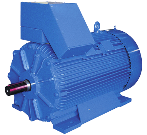 Medium & Low Voltage AC Motors - AlfaMotori - Electric Industrial Motors and Drivers